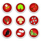 Button set red of ecology Royalty Free Stock Photography