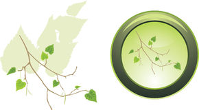 Button with sprig of birch Royalty Free Stock Photography