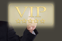 Button VIP Royalty Free Stock Images