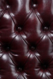 Buttoned leather pattern Stock Images