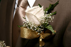 Buttonhole Royalty Free Stock Photography