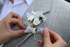 Buttonhole Royalty Free Stock Image