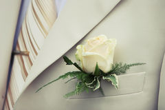 Buttonhole Royalty Free Stock Photos