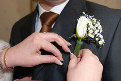 Buttonhole Stock Image