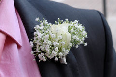 Buttonhole flowers Royalty Free Stock Images