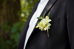 Buttonhole on a jacket. Royalty Free Stock Photo