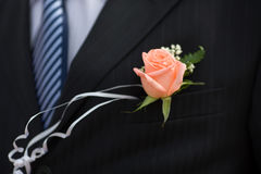 Buttonhole with rose Stock Images