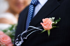 Buttonhole with rose Royalty Free Stock Photos