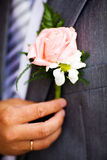 Buttonhole with rose Royalty Free Stock Images