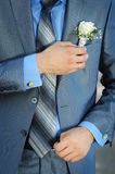 Buttonhole with rose Stock Photography