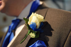 Buttonhole. The sign of true love during that special day with the exchange of rings Stock Photography