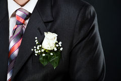 Buttoniere. Photo of a groom's suite and tie, isolated Royalty Free Stock Photo