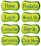 Buttons design with words in green Royalty Free Stock Photography