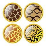 Buttons in style of animal texture Stock Photos
