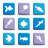 Fish buttons. Vector illustration. Buttons of various kinds of sea inhabitants Royalty Free Stock Photo