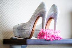 Buty i Bridal różowa podwiązka Obrazy Royalty Free