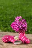 buty różowią gumę Obrazy Royalty Free