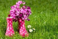 buty różowią gumę Obraz Royalty Free