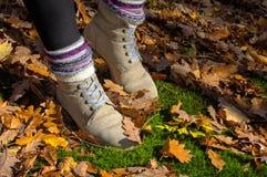 Buty w liściach Obrazy Royalty Free