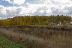 Buurt van de stad van Tyumen. stock foto