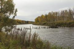 Buurt van de stad van Tyumen. stock fotografie