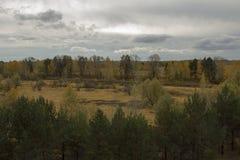 Buurt van de stad van Tyumen. stock afbeelding