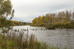 Buurt van de stad van Tyumen. stock afbeeldingen