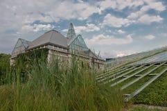 buw庭院绿色屋顶顶层 免版税图库摄影