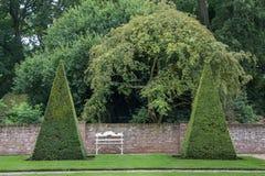Buxux. Buxuspiramides in a castle garden stock image