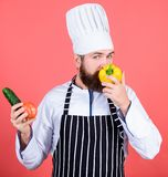 Buy fresh vegetables grocery store. Vegetarian restaurant. Hipster chief chef vegetarian cafe. Choose vegetarian. Lifestyle. Man cook hat apron hold fresh royalty free stock photo