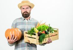 Buy local foods. Farmer rustic bearded man hold wooden box with homegrown vegetables and pumpkin white background. Farmer carry harvest. Locally grown foods stock photos