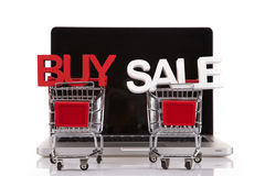 Buy and Sale in baskets and computer Royalty Free Stock Photo
