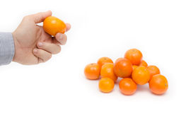 Buy some ripe oranges wich are on a white background. Hand holding a ripe orange with a pile next to it on white background suggesting fresh raw seasonal fruits royalty free stock photo
