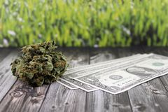 Money obtained from cannabis smuggling royalty free stock photo