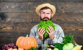 Buy vegetables local farm. Homegrown harvest concept. Typical farmer guy. Farm market harvest festival. Man mature. Bearded farmer hold vegetables wooden royalty free stock photo