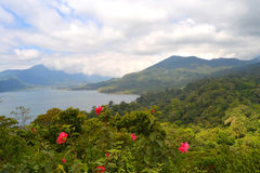 Buyan Jeziorny widok w Bali Zdjęcia Royalty Free
