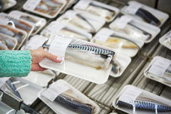 Buyer chooses fish mackerel Royalty Free Stock Image