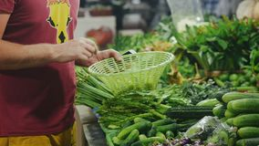 Buyer choosing vegetables and putting into the basket. Man taking products and putting it into the basket. Holding the phone in hand stock footage