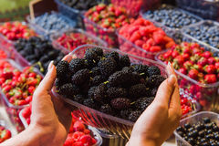 Buying berries in the local market Royalty Free Stock Photos