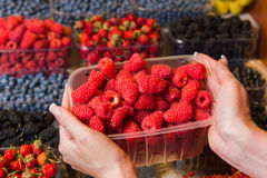 Buying berries in the local market Stock Images