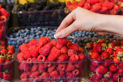 Buying berries in the local market Royalty Free Stock Images