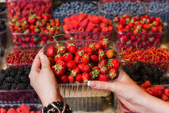 Buying berries in the local market Royalty Free Stock Image