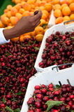Buying Cherries Royalty Free Stock Image