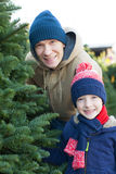 Buying christmas tree Royalty Free Stock Images