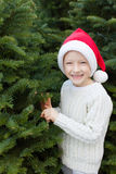 Buying christmas tree Stock Photos