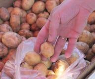 Buying potatoes Stock Photos