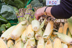 Buying Vegetables at the Market Royalty Free Stock Image