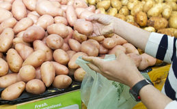 Buying vegetables Stock Photography