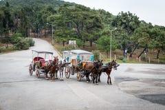 Buyukada των νησιών πριγκήπων ` κοντά στη Ιστανμπούλ, Τουρκία στοκ φωτογραφίες με δικαίωμα ελεύθερης χρήσης