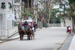 Buyukada des îles de ` de princes près d'Istanbul, Turquie image libre de droits